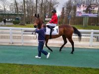 LOQUEN WINNER à Chantilly !!!